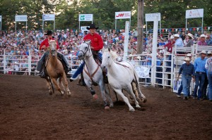 rodeo photography 5 Nicole M Miller