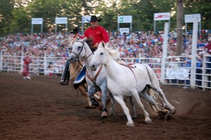 rodeo photography 6 Nicole M Miller
